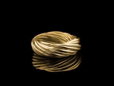 FOURTEEN | 14 carat Gold rings intertwined (custom made)