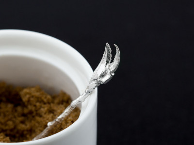 CLAW OF A CRAB | Silver spoon with crab's claw on a twig