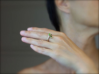 Two Squared | Peridot Silver Ring (sold)