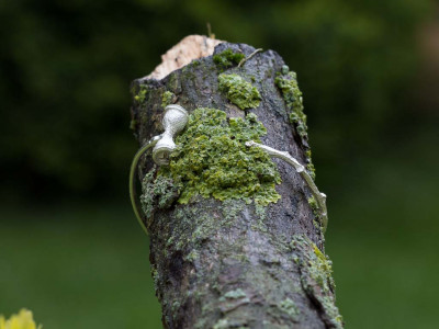 EUCALYPTUS ON TWIG | Bangle in Sterling Silver